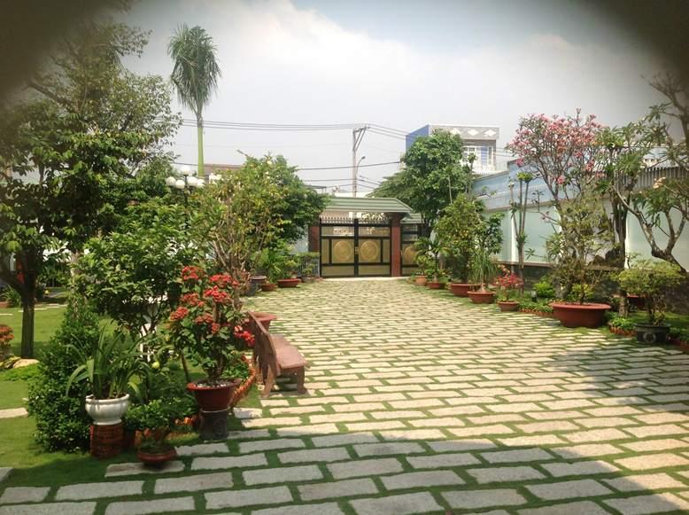 Trang trí tiểu cảnh sân vườn 2