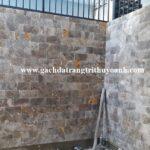 Điểm nhấn chính cho bức tường ốp lát trang trí đá mài bóng vàng bông